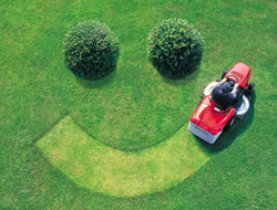 Lawn CareReviews In Orange County